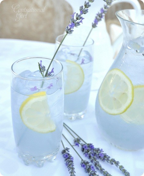 Beat the heat with these Refreshing Non-Alcoholic Summer Drink Recipes! Perfect for relaxing outdoors and entertaining adults and kids alike.