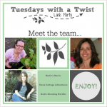 Tuesdays with a Twist Linky Party at Stone Cottage Adventures