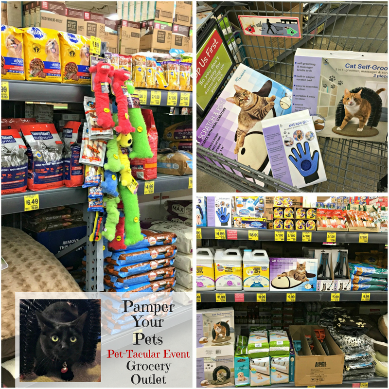 Pamper Cats - I love to pamper my kitties, Jinx and Josie, so I had to head on over to see what I could find at the Grocery Outlet Pet-Tacular Event. Find pet food, grooming supplies, beds, toys, and more for your cats and dogs. Get there quick to discount shop for your pet. #ad #GroceryOutletPettacular #GroceryOutlet