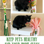 Keep Pets Healthy and Your Home Clean – Tips