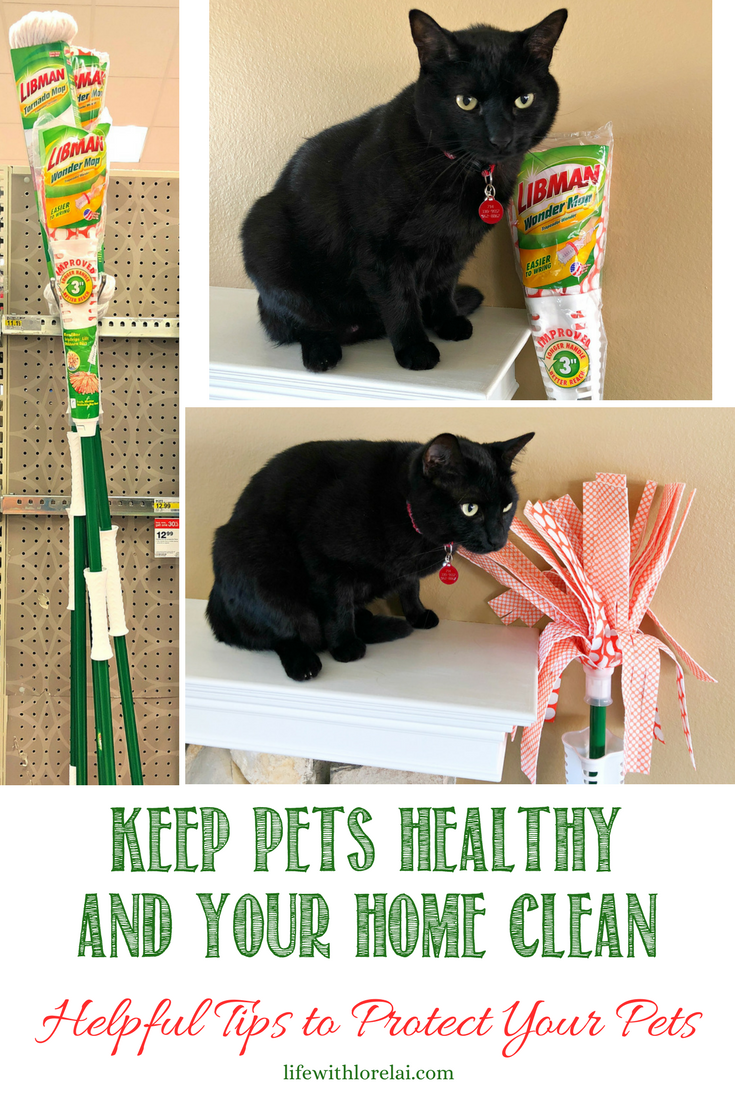 Celebrate National Pet Month with these tips on how to keep pets healthy and your home clean. Libman makes it easy with the amazing Wonder Mop®. Get a $3.00 OFF COUPON! #ad #EmbraceLifesMesses #CelebratePetsWithLibman #pets #cats