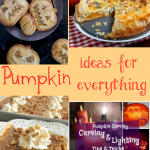 Pumpkin Ideas for Everything! + HM #206
