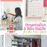 Organization and New Habits + HM #215