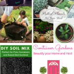 Container Gardens Beautify Your Home + HM #230